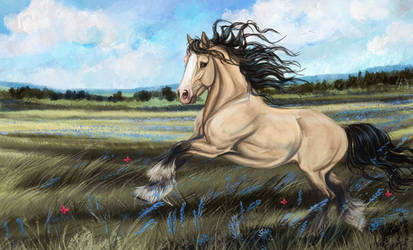 the wind by Vorona-Sidhe
