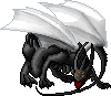 Whitewing Dragon by dolphinsong