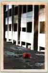 The Memory - 2011 by mirkomkb