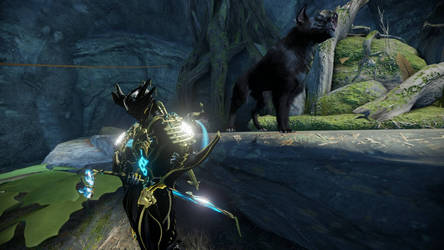 Loki warframe profile