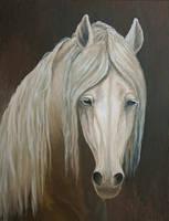 Untitled Portrait by Hareguizer