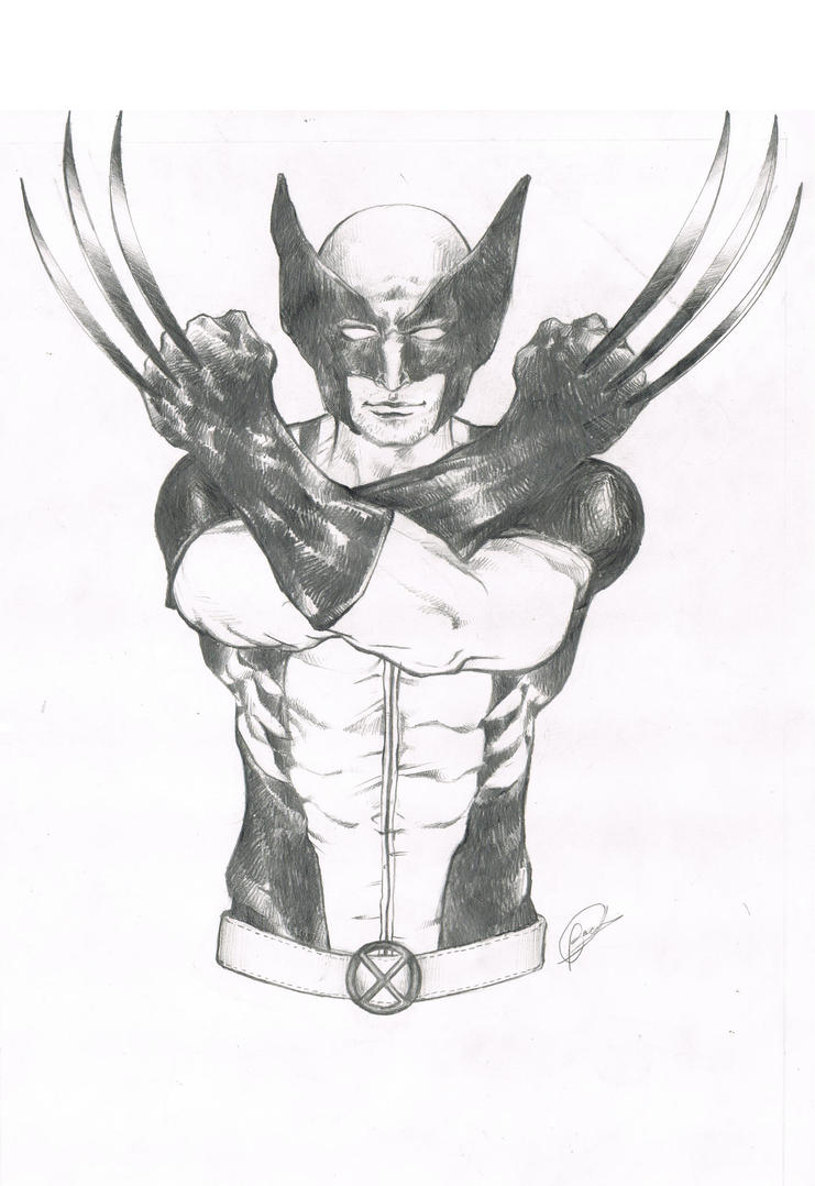 the Wolverine by Lovely-Bacar