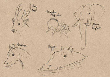 Sketch Page - Critters