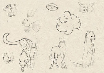 Sketch Study - Assorted Critters