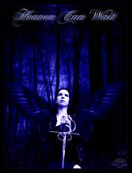 Heaven Can Wait by silentfuneral