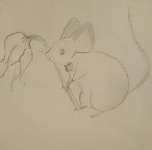 The-Lovely-Mouse's Profile Picture