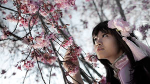 Hetalia - Taiwan by evalime