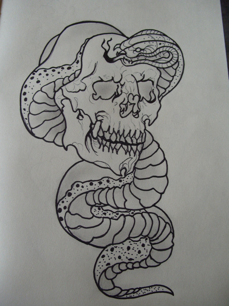 Snake Tattoo Line Drawing : Snake and skull line drawing by through these eyes on
