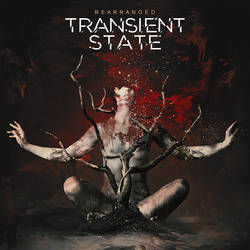 Transient State - Rearranged by Amok-Studio