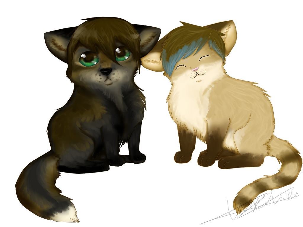 fox and kitteh