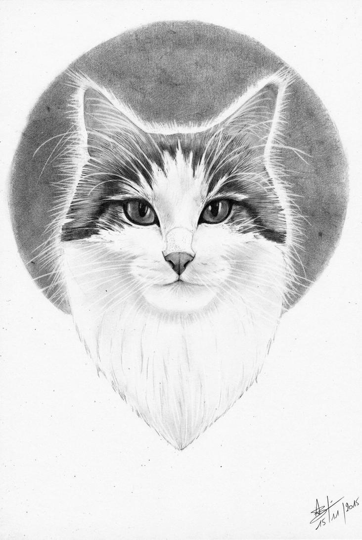 Cat portrait by Psychologeek