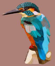 Kingfisher BOi by LynxKittyArt