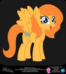 Kelly Metzger OC Show Style Pony