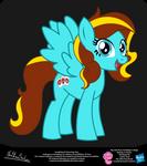ILoveKPAlot OC Show Style Pony