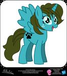 Dorothy OC Show Style Pony