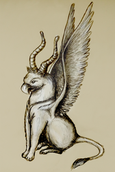 Griffin by Taimuko