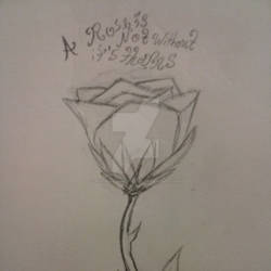 A Rose is not Without it's Thorns