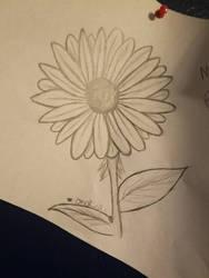 Flower  by Onokira