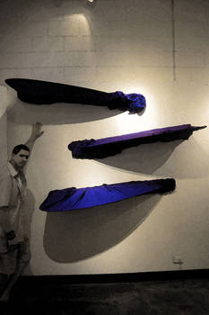Blue Wings 2004