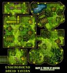 Underground Druid Tavern
