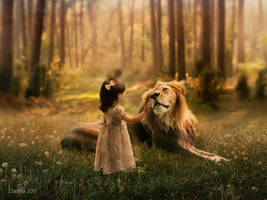 The lion by tinnatinna