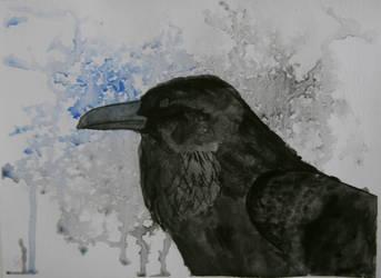 Raven by SnowhiteTiger