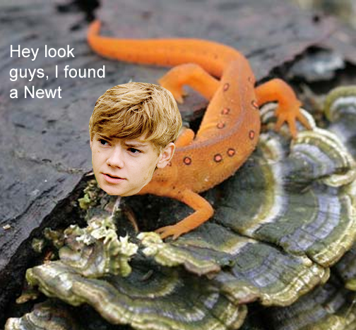 the maze runner newt by mgs587 on deviantart