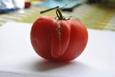 What's wrong whit this tomato.. by KalmaKim