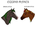 Equind Mane Styles [PART ONE]