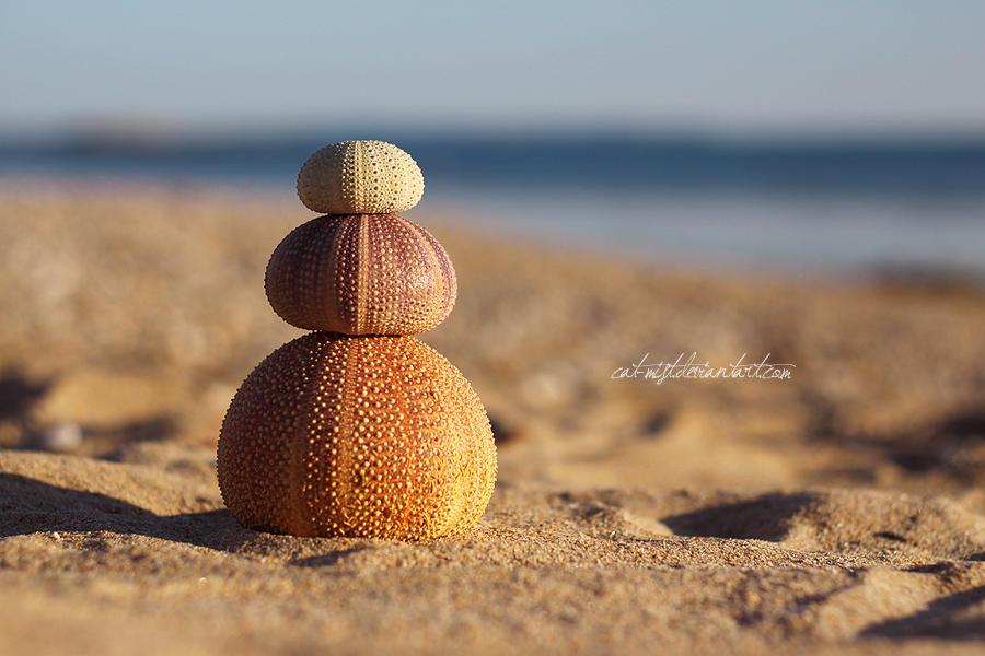 Urchin Cairn