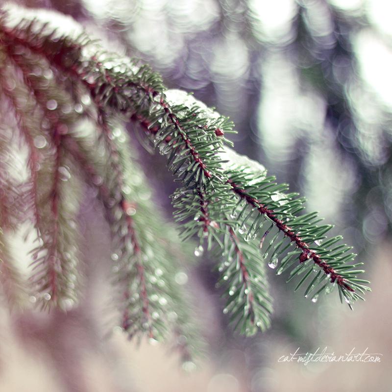 Frozen Tears by Cat-Mist