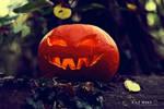 All Hallows' Eve
