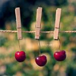 Le temps des cerises by Catlaxy