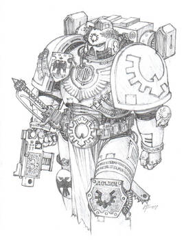Sons Of Golden Space Marine