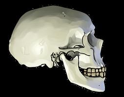 Skully Paintingy