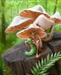 FairyMushroom