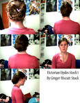 Victorian Updos Hair Stock 1
