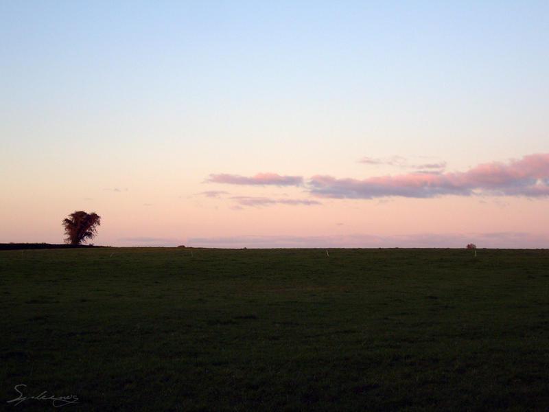 Evening Freedom by Spleenog