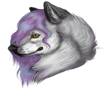 Whitewolf by NForests