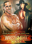 Undertaker vs HBK WM26
