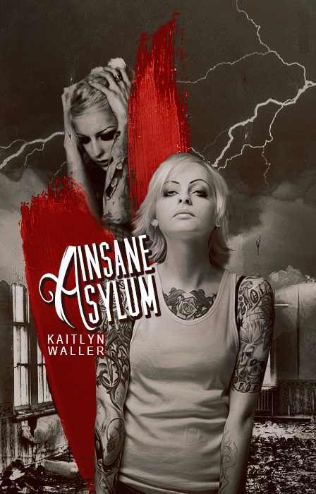 Insane Asylum by Talks2rocks