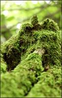 zelenka by OniRespect
