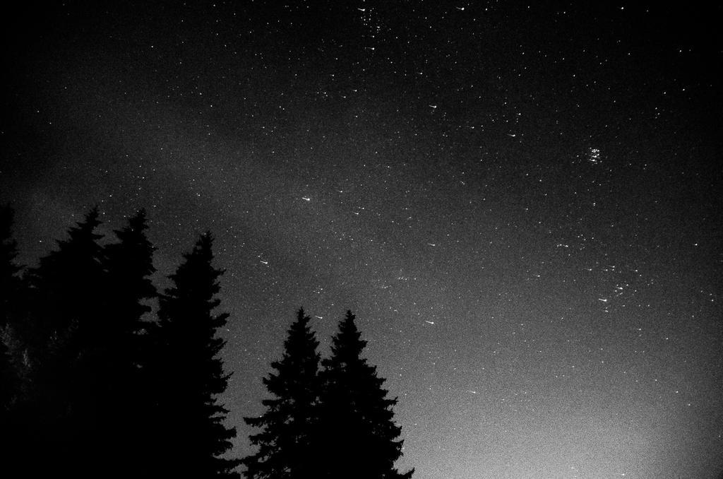 Night sky by R4degast
