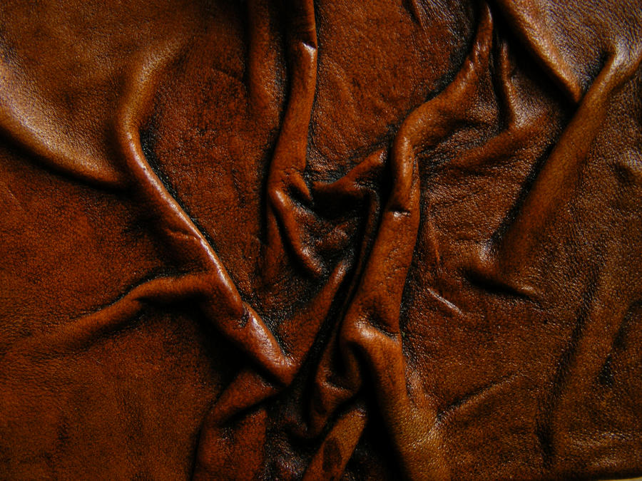 Leather Texture 2 by Tasastock