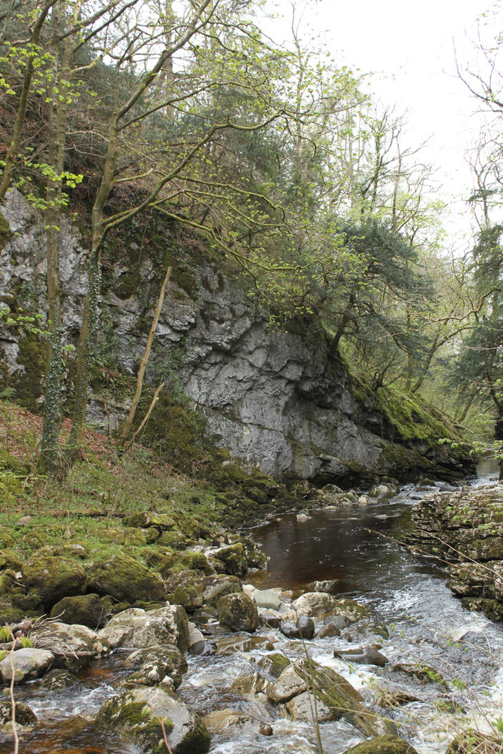 Ingleton Falls 43 by Tasastock