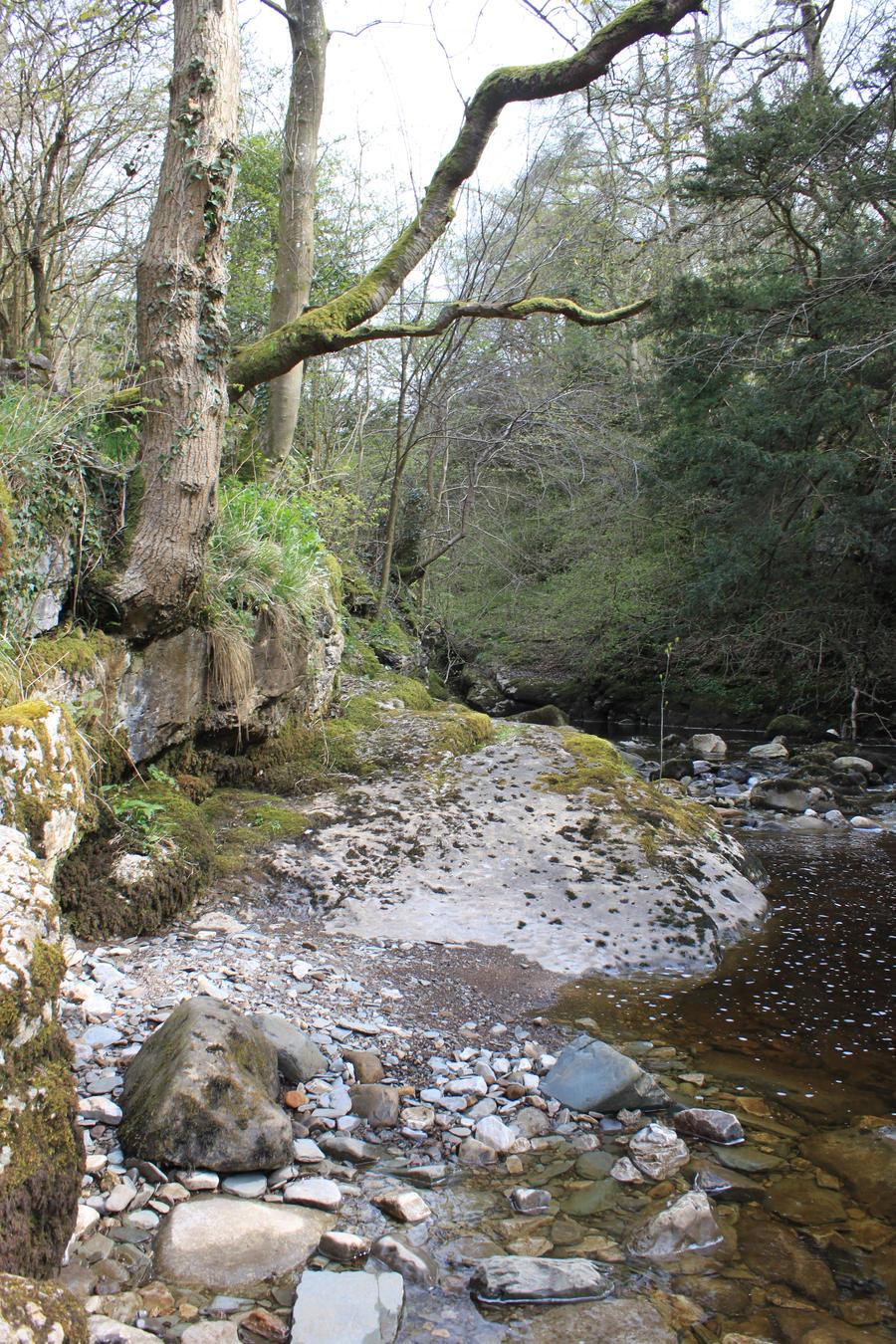 Ingleton Falls 45 by Tasastock