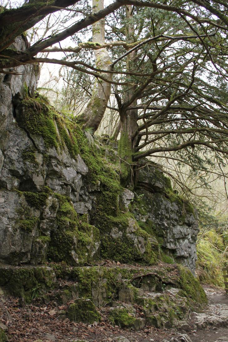 Ingleton Falls 46 by Tasastock