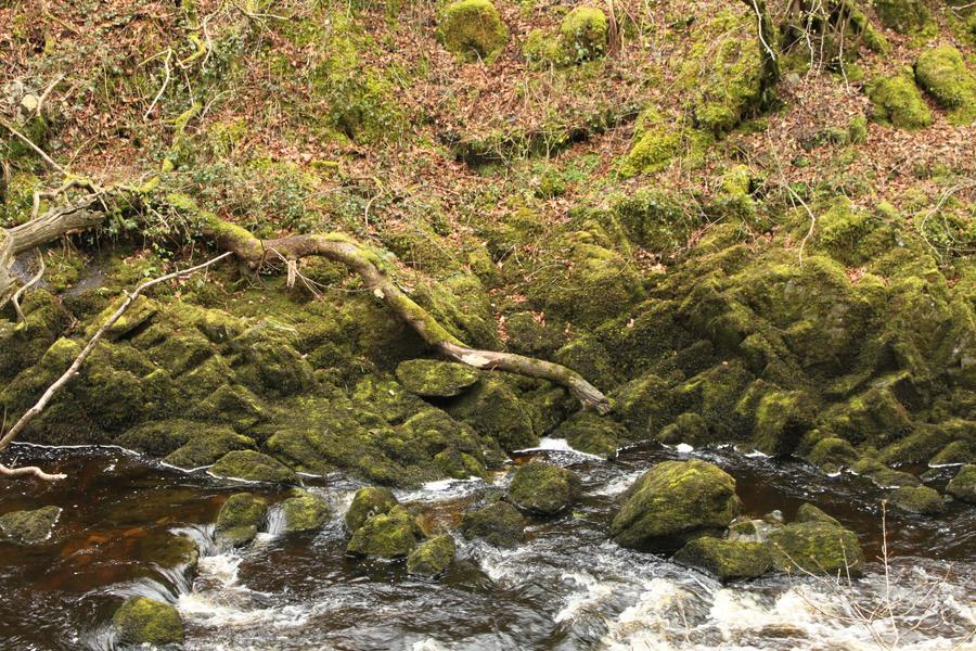 Ingleton Falls 51 by Tasastock