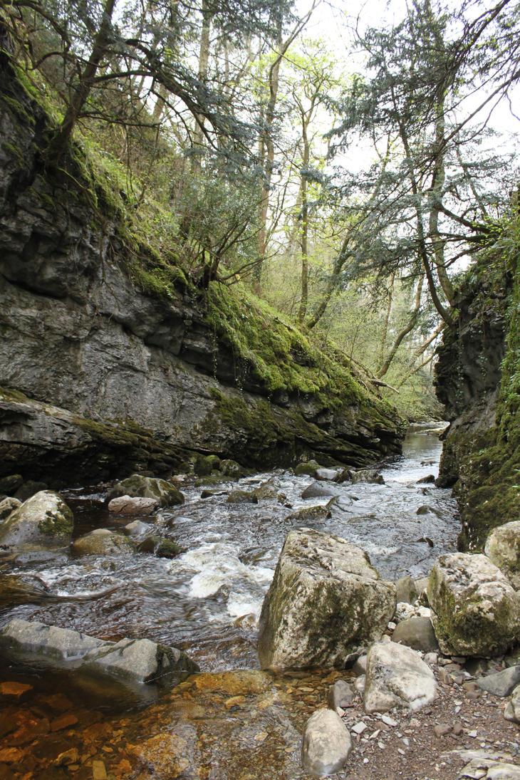 Ingleton Falls 61 by Tasastock