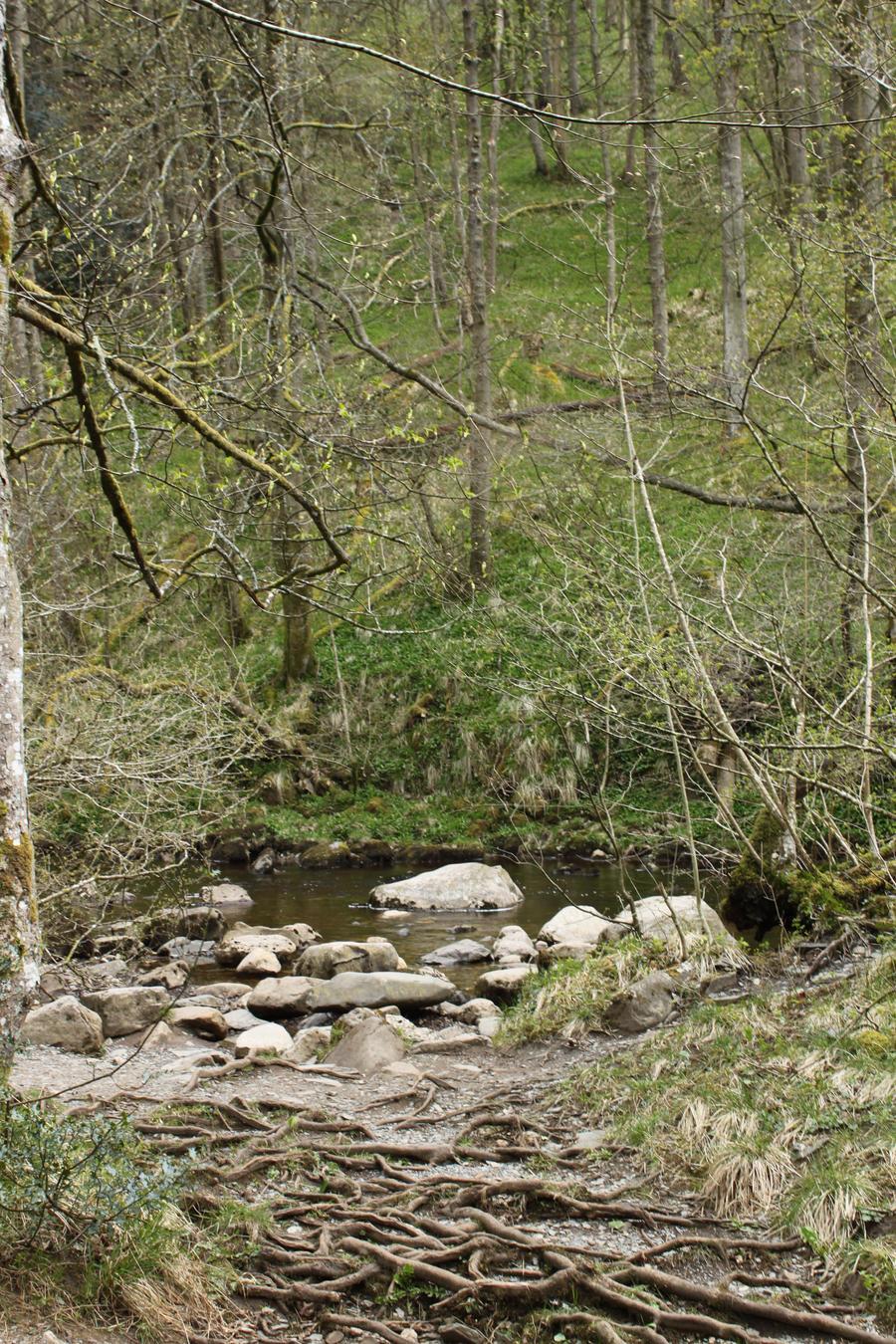 Ingleton Falls 63 by Tasastock